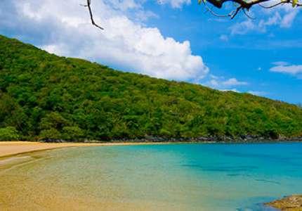 Nên đi du lịch Côn Đảo vào tháng mấy