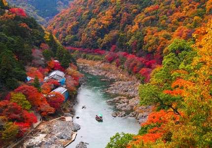 Bốn điểm tham quan mùa thu Nhật Bản tuyệt đẹp