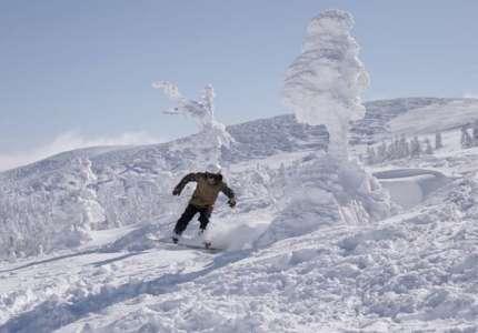 Khu rừng tuyết hút khách nhất Nhật Bản