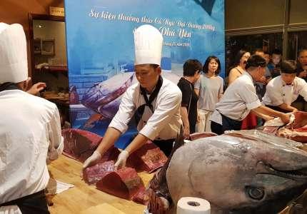 Phú Yên quảng bá cá ngừ đại dương đến du khách