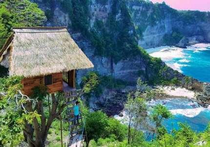 Du lịch Bali trải nghiệm căn nhà trên cây