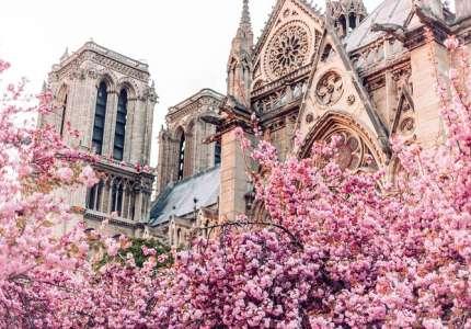 Du xuân Paris có gì đẹp