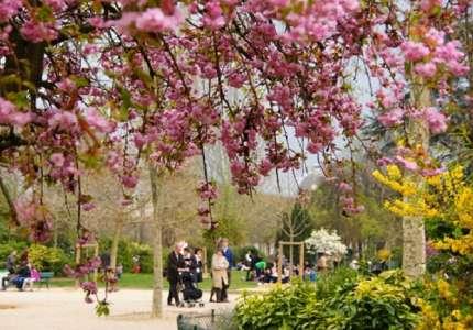 Những địa điểm du lịch Châu Âu mùa xuân nhất định phải tới