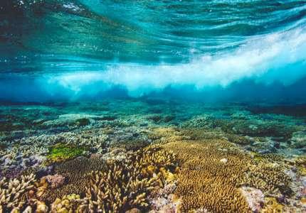 Những Địa Điểm Du Lịch Úc Mùa Hè Bạn Không Thể Bỏ Qua