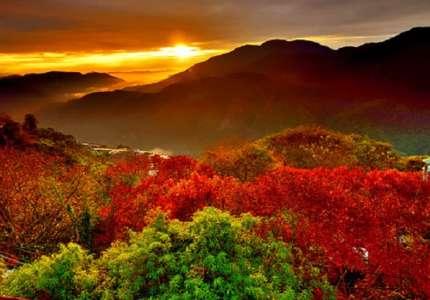 Du lịch Đài Loan Mùa lá vàng lá đỏ