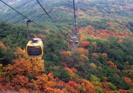 Mùa lá đỏ Hàn Quốc đẹp nhất vào tháng mấy