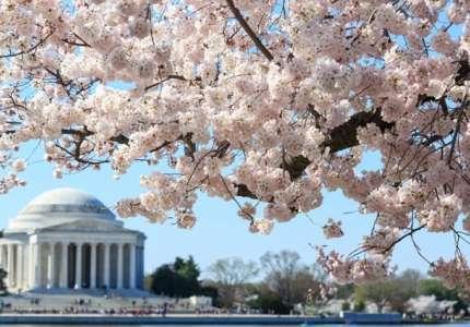 Những điều hấp dẫn khi du lịch Mỹ mùa xuân bạn cần biết