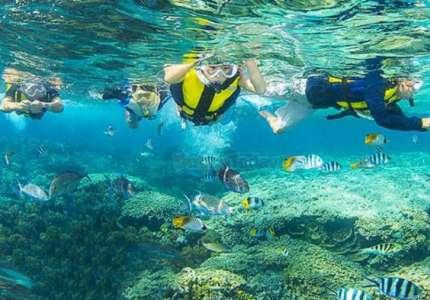 Tham quan khu bảo tồn biển Hòn Mun - Nha Trang