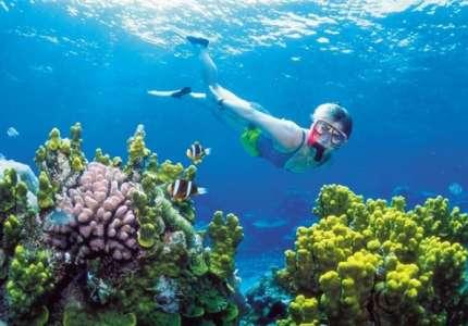 5 Điểm ngắm san hô đẹp nhất trong dịp hè bạn nên biết
