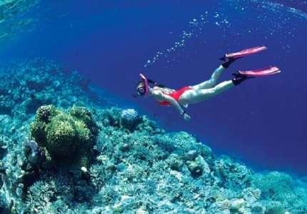 Lặn ngắm san hô Phú Quốc giá bao nhiêu