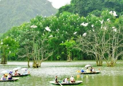 Khu du lịch sinh thái Cồn Chim Quy Nhơn