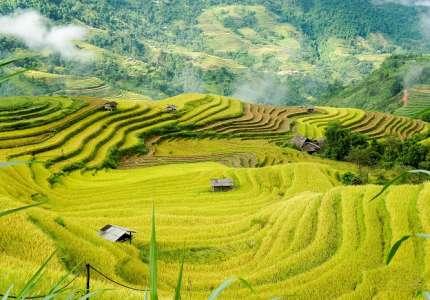 Vẻ đẹp mùa lúa Nậm Hò