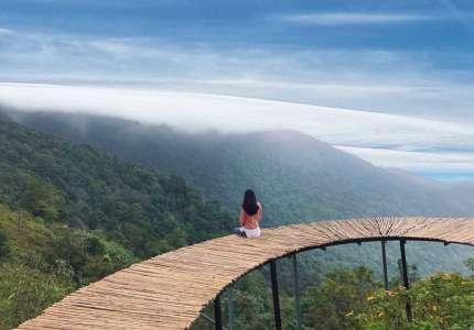 Tham quan Cầu Mây Tam Đảo