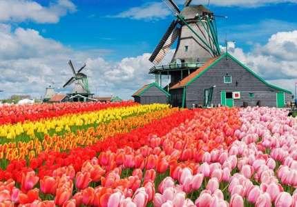 Đi du lịch Châu Âu mùa nào đẹp nhất