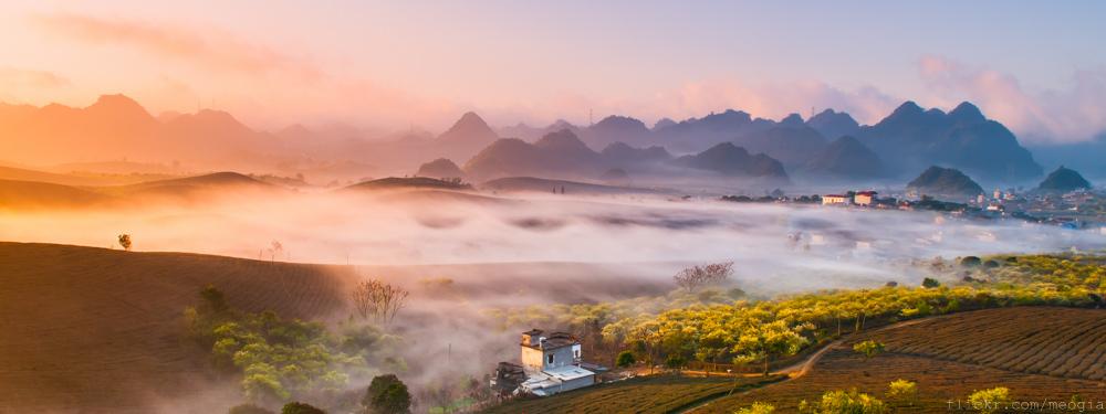 Cao nguyên Mộc Châu huyền ảo trong sương sớm