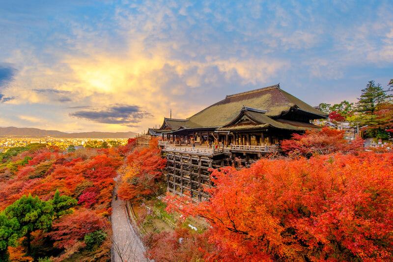 Du Lịch Nhật Bản Mùa Lá Đỏ 4 Ngày 3 Đêm