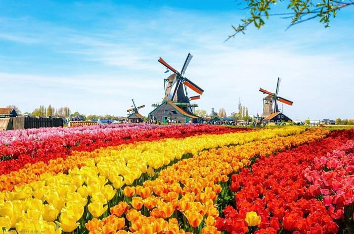 Du Lịch Châu Âu Pháp - Bỉ - Hà Lan - Đức 9 Ngày 8 Đêm