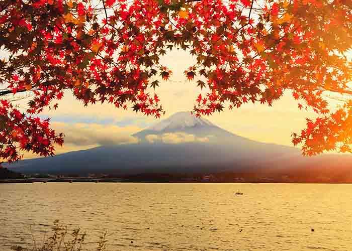 Du lịch Nhât Bản mùa lá vàng lá đỏ 6 ngày 5 đêm từ Hà Nội