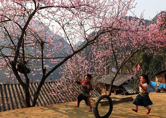 Du lịch Sapa - Cát Cát đi ô tô từ Hà Nội