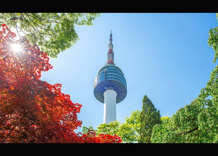 Tour Du Lịch Nhật Bản – Hàn Quốc 8 Ngày Tết 2020
