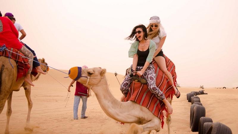 Tour Safari - Abu Dhabi - Ice Cafe Dubai Tết Âm Lịch