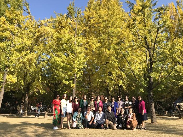 Tour Du Lịch Hàn Quốc Mùa Lá Vàng/Lá Đỏ 6 NGày 5 Đêm (Bay Jin Air) Giảm Ngay 1.500.000đ Khi Đăng Kí Online