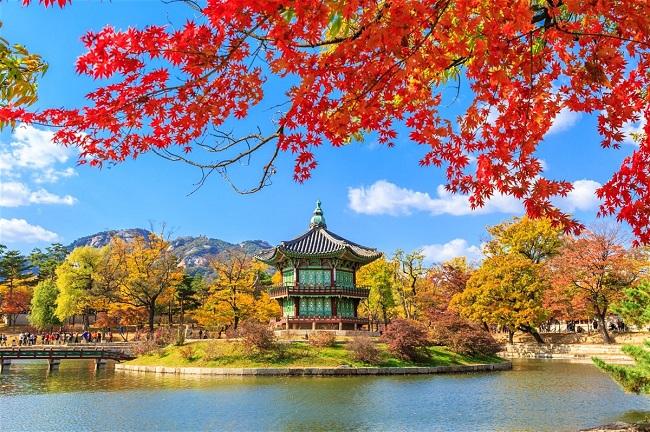 Du Lịch Hàn Quốc 6 Ngày 5 Đêm Giá Rẻ Từ Hà Nội