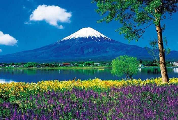 Tour Du Lịch Nhật Bản 5 Ngày 4 Đêm Mùa Hè 2020